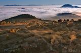 Мъгливо утро в Родопите ; comments:98