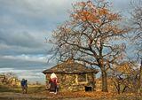 ... есен ... ; comments:26