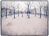В Париж... ; comments:47