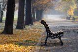 Есента и самотата... ; comments:3