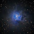 NGC 7023 (Iris Nebula; Caldwell 4; LBN 487; VDB 139) - Разсеян звезден куп асоцииран с отражателна мъглявина в съзвездието Цефей ; comments:19