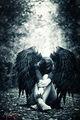 Fallen Angel ; comments:9