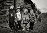 бандата на Алишко ; comments:89