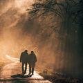 walk ; comments:26