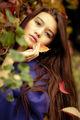 Autumn touch ; comments:12