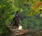 Каубоят ЯНИ и кобилата Тенеси Дарк Скай,когато още я имаше... ; comments:11