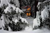 зимна нощ ; comments:38