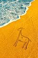 С жираф на море... ; comments:56