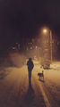 двама, сняг и един фотограф ; comments:18