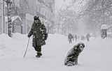 Из снежните улици на Враца ; comments:33
