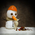 Зимно.... ; comments:52
