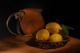 Етюд с лимони ; comments:36