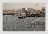 Дубай - Персийският квартал. ; comments:63