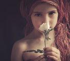Пустинно цвете ; comments:55