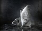 Две риби преди вечеря. ; comments:30
