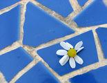 Щастие, път, писмо ... ; comments:7