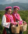 Една българска роза и мен...:) ; comments:22