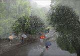 Сезонът на дъждовете 1 ; comments:38