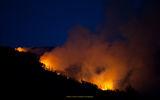 Пожарът на Бистришко бранище ; Comments:6