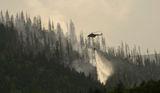 Пожарът на Бистришко Бранище ; comments:10