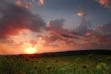 На слънцето пътеката ; comments:4