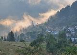 мъглата ; comments:5