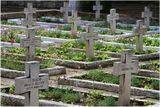 Военно гробище (гр. Тутракан) ; comments:3