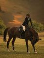 Алюрите на коня ; comments:18