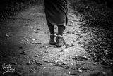Let's walk... alone in darkness.... ; comments:8