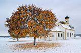 Зимна есен #2 ; comments:25