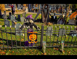 TRICK OR TREAT ; comments:25