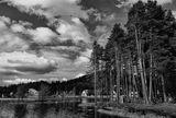 Родопа планина ; comments:76