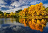 Из... разказите на есенното огледало... ; comments:61