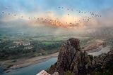 Мъгливи утрини ; comments:46