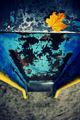 Носталгия по море с жълта точка! ; comments:62
