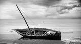 Рибарят и неговата душа ; comments:66