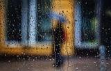 Rainy days... ; comments:62
