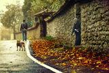 История с куче, дядо и dedo... ; comments:98