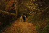Есента на живота... ; comments:11
