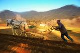 Родопите....един различен свят ; comments:52