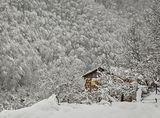 Къщичка в снега се гуши ... 2 ; comments:56