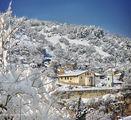 Асеновград, малкият Йерусалим. ; comments:61
