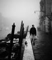 из Венеция 7 ; comments:72