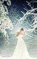 Snow Queen ; comments:100