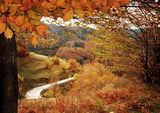 """Есента край с.Манастир-най-високото село на Балканския полуостров! :)/ произнася се с ударение на първото ,,а""""/ :) ; comments:133"""