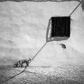 Кучето от арабския квартал ; comments:58