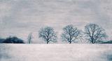 Зимно ; comments:68