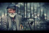 Бездомник или Благородник ; comments:128