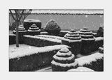 Мояга градина Топиария.Topiary ; comments:28