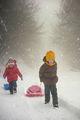 Снежни игри ; comments:50